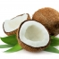 ingred_virgin-coconut2